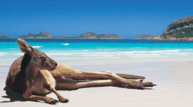 7 day Discover Western Australia, From