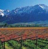 10 Day Cape Town, Winelands and Safari, From £1399pp